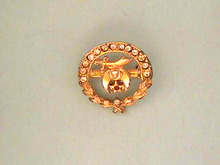 Shriners Pin,Enamelled,Jeweled,Vintage,Nice!
