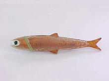 Fishmaster Fish Pin Lure Fishing Tackle Vintage