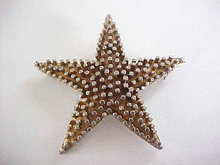 Vintage Star Pin Large Two Tone Unusual