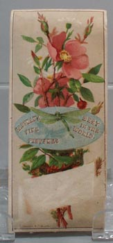 Victorian Trade Card Eastman's Perfumes Dragon Fly 1800
