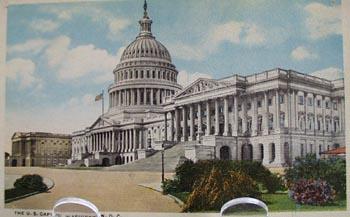 Washington DC Capital & Blooming Shrubs PC