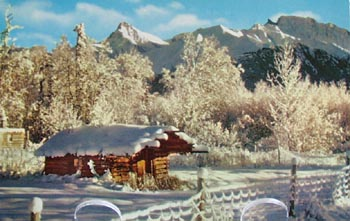 Alaska Postcard Pioneer Log Cabin