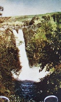 Rainbow Falls in Hawaii Postcard