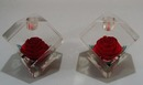 Large, Lucite Red Rose Candleholders!