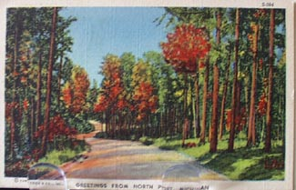 Greetings from North Port Mich. Postcard