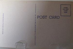 Petrifying Springs Kenosha WI Postcard