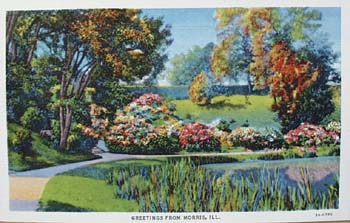 Greetings from Morris Illinois postcard,