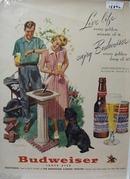 Budweiser Live Life Ad 1951