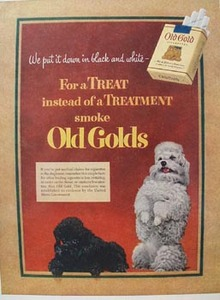Old Gold Black & White Poodle Ad 1952