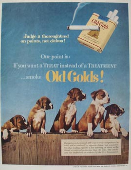 Old Gold & Boxer Pups Ad 1952