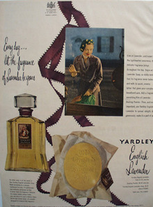 Yardley English Lavender Every Day Ad 1950