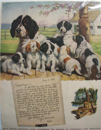 Polk Products Bess & Pups Ad 1949