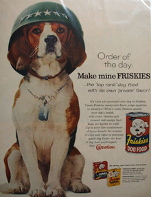 Friskies Dog Food & Beagle in Army Hat Ad 1960