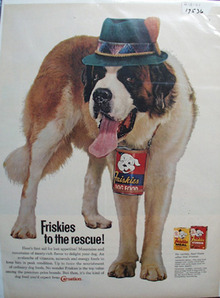 Friskies & St Bernard With Green Hat Ad 1961