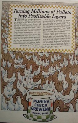 Purina Chicken Food Ad 1927