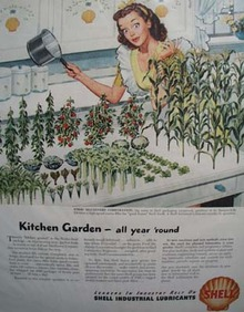 Shell fresh garden year around Ad 1946.