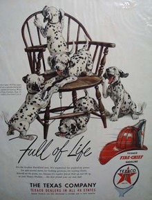Texaco fire-chief gasoline is full of life Ad 1950.