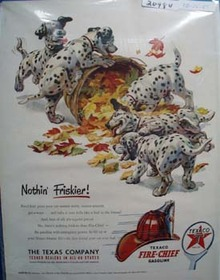 Texaco Dalmatian Nothing Friskier Ad 1951