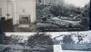 Woodrow Wilson Postcards