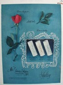 Shulton Stick Cologne And One Rose Ad 1952