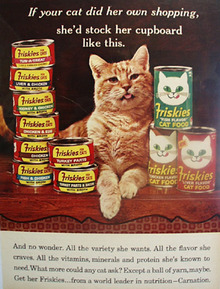 Friskies Cat Food And  Cat Ad 1965