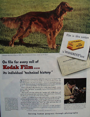 Eastman Kodak And Champion Rufus Ad 1945