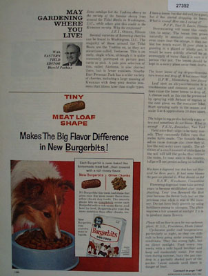Burgerbits Dog Food Makes Flavor Difference Ad 1964