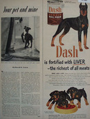 Dash Dog Food Fortified With Liver Ad 1951