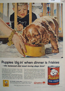 Friskies and Cocker Spaniel Ad 1957