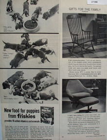 Friskies And Six Puppies Ad 1965