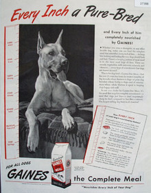 Gaines Every Inch A Pure Bred Ad 1945