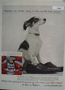 Ken L Ration Wearing Masters Shoes Ad 1959