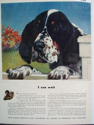 Sergeants Dog Medicine I Can Wait Ad 1942