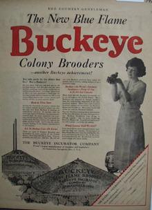 Buckeye Incubator New Blue Flame Ad 1923