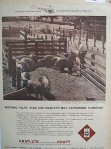 Kraylets Milk On The Spot Feeding Ad 1960