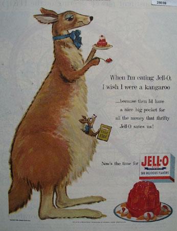 Jell O And Kangaroo Ad 1954