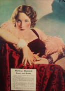 Marlene Dietrich Actress Picture Article 1937