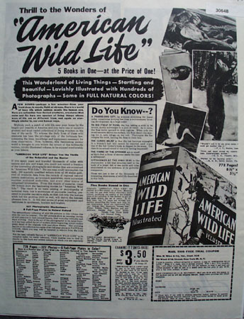 Wm H Wise Co American Wild Life Ad 1946