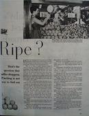 Is It Ripe Fruit 1949 Article