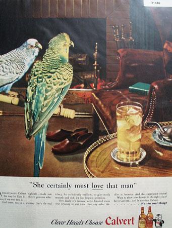 Calvert Whiskey Parrots 1946 Ad