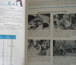 How To Prepare Foods For Freezing Cookbook 1958