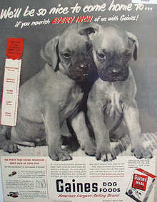 Gaines Dog Food Two Puppies 1950 Ad