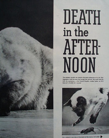 Death In The Afternoon Article Cat And Mouse 1949