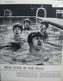 Young Englishmen In Miami Pool 1964 Article