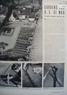Gardens For U.S. At War Article 1942