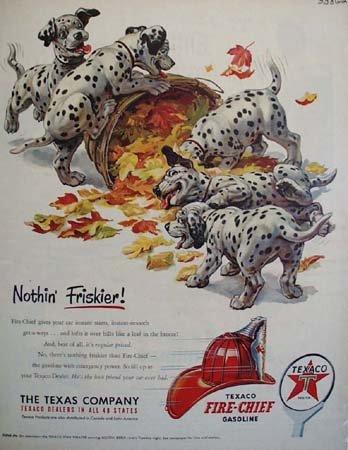 Texaco Fire Chief Gasoline Nothing Friskier 1951 Ad