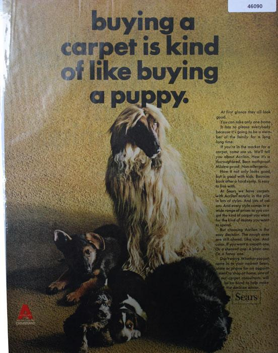 Celanese Fortrel Carpet 1966 Ad