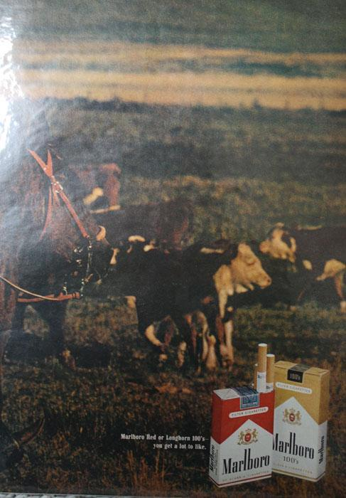 Marlboro Red Or Longhorn 100s Cigarettes 1970 Ad