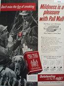 Pall Mall Cigarette Hunting Scene 1956 Ad