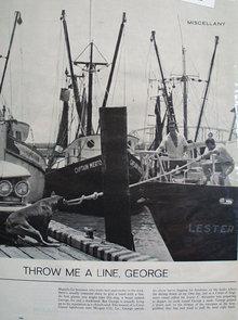 Throw Me A Line George Dog Ad 1964